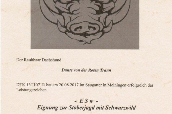 Urkunde ESw Dante von der Roten Traun